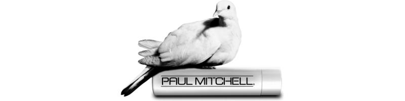 media/image/paulb_banner.png